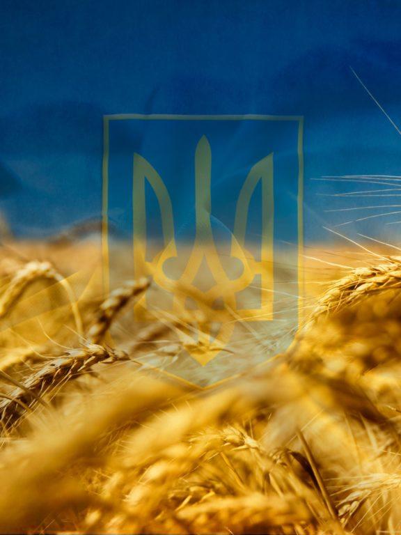 Красиві привітання з Днем захисника України українською